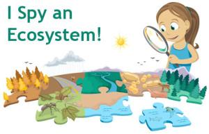 IMAGE-Ecosystem_cartoon