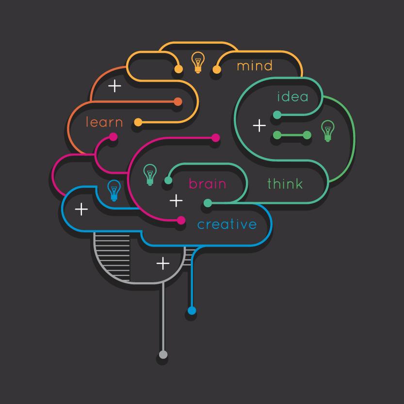 Brain Terms